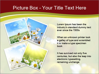 Chamomile medical PowerPoint Template - Slide 23