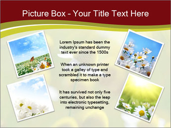 Chamomile medical PowerPoint Template - Slide 24