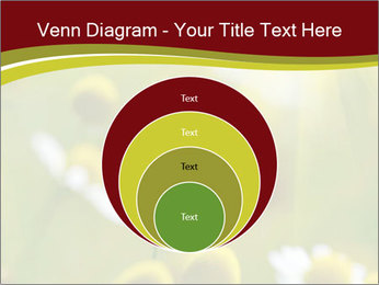 Chamomile medical PowerPoint Template - Slide 34
