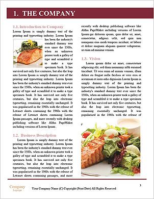 0000090224 Word Template - Page 3