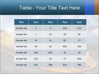 Buddha Feet PowerPoint Templates - Slide 55