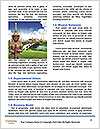 0000090236 Word Templates - Page 4