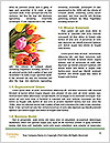 0000090237 Word Templates - Page 4