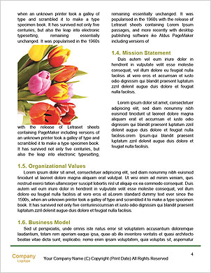 0000090237 Word Template - Page 4