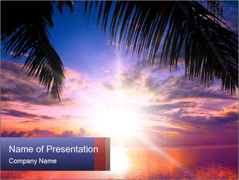 Bright Sun And Coconut Tree PowerPoint Template - Slide 1