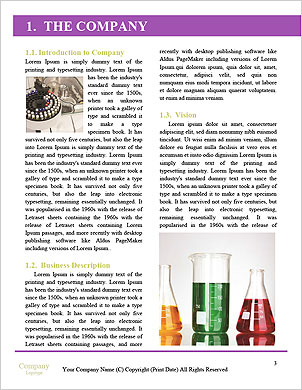 0000090245 Word Template - Page 3