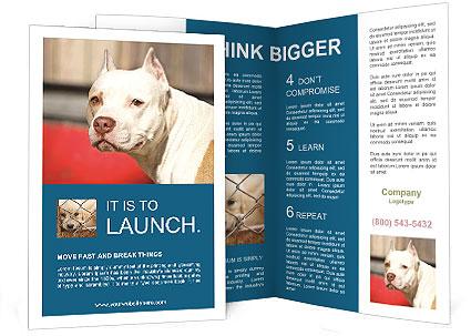 0000090250 Brochure Templates