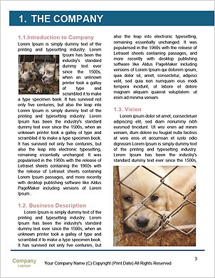 0000090250 Word Template - Page 3