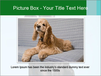 Big Black Dog PowerPoint Template - Slide 16