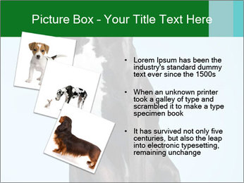 Big Black Dog PowerPoint Template - Slide 17