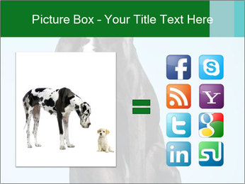 Big Black Dog PowerPoint Template - Slide 21