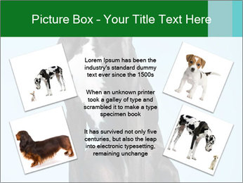 Big Black Dog PowerPoint Template - Slide 24