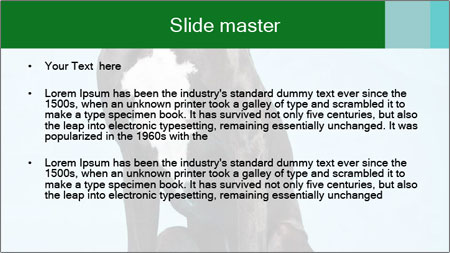 Big Black Dog PowerPoint Template - Slide 2