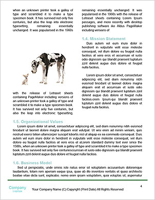 0000090251 Word Template - Page 4