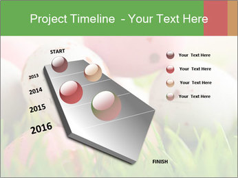 Eggs Decoration PowerPoint Template - Slide 26