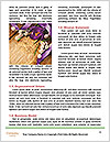 0000090255 Word Templates - Page 4