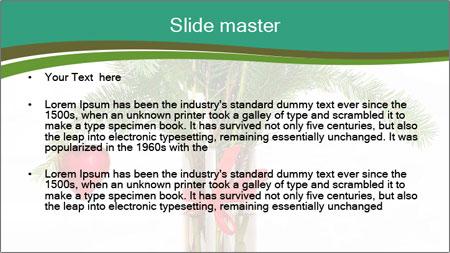 Red Flowers In Vase PowerPoint Template - Slide 2