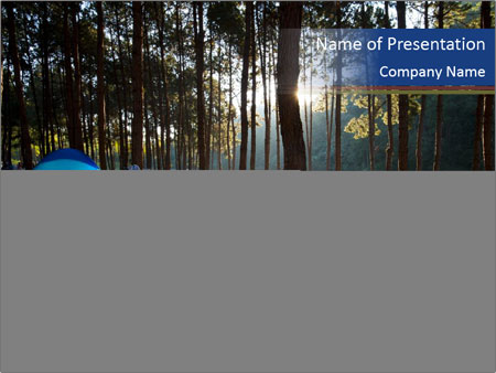 Forest Wilderness PowerPoint Template