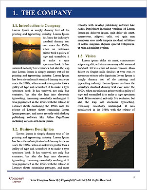 0000090262 Word Template - Page 3