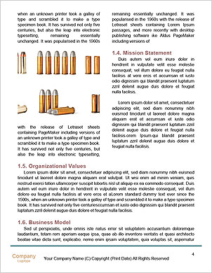 0000090263 Word Template - Page 4