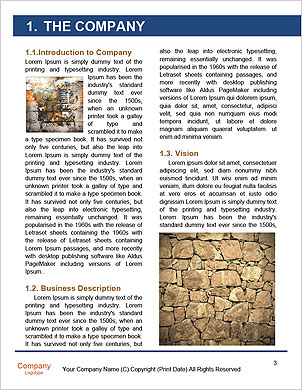 0000090267 Word Template - Page 3