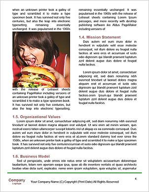 0000090268 Word Template - Page 4