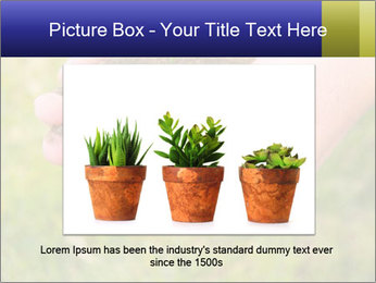 Green Plant Protection PowerPoint Template - Slide 15