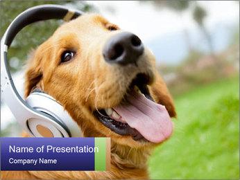 Dog In Headphones PowerPoint Template