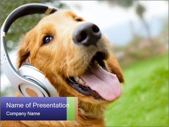 Dog In Headphones PowerPoint Template - Slide 1