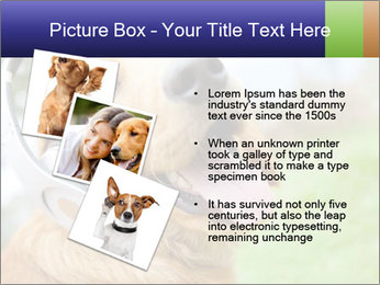 Dog In Headphones PowerPoint Template - Slide 17