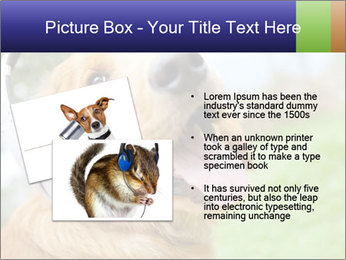 Dog In Headphones PowerPoint Template - Slide 20