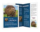 0000090282 Brochure Templates