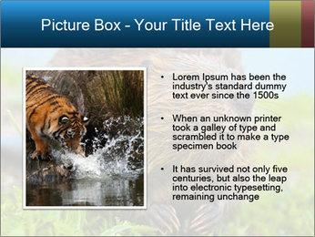 Wild Nutria PowerPoint Template - Slide 13