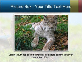 Wild Nutria PowerPoint Template - Slide 16