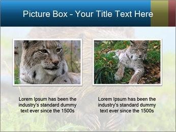Wild Nutria PowerPoint Template - Slide 18