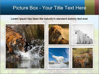 Wild Nutria PowerPoint Templates - Slide 19