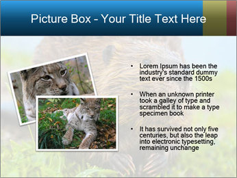 Wild Nutria PowerPoint Template - Slide 20