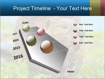 Wild Nutria PowerPoint Template - Slide 26