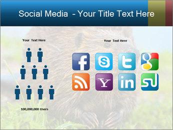 Wild Nutria PowerPoint Template - Slide 5