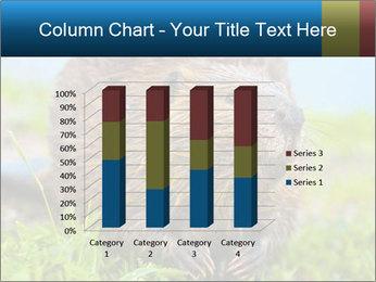 Wild Nutria PowerPoint Template - Slide 50