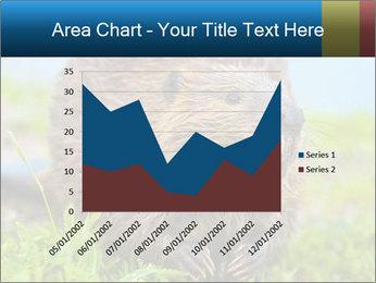 Wild Nutria PowerPoint Template - Slide 53