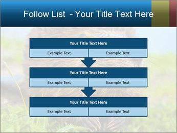 Wild Nutria PowerPoint Template - Slide 60