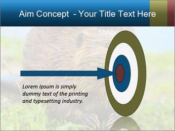 Wild Nutria PowerPoint Template - Slide 83