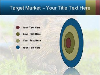 Wild Nutria PowerPoint Template - Slide 84