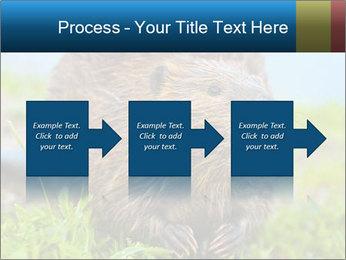 Wild Nutria PowerPoint Templates - Slide 88