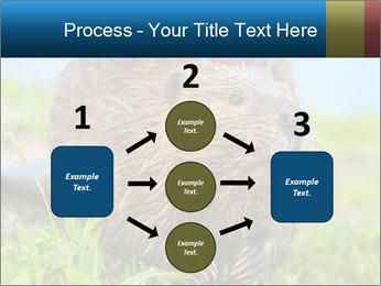 Wild Nutria PowerPoint Template - Slide 92