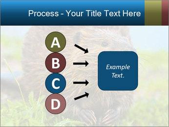 Wild Nutria PowerPoint Template - Slide 94