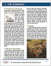 0000090282 Word Templates - Page 3
