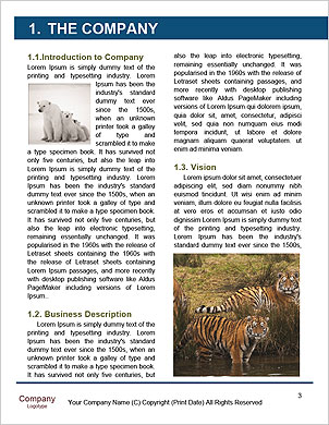 0000090282 Word Template - Page 3
