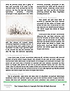 0000090298 Word Template - Page 4
